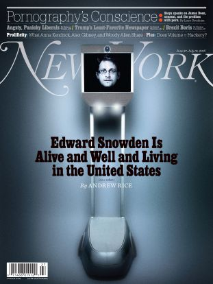new york magazine, snowbot